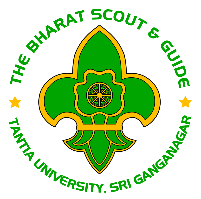 bharat scouts and guides book pdf